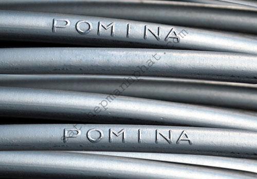 sat-thep-pomina-2